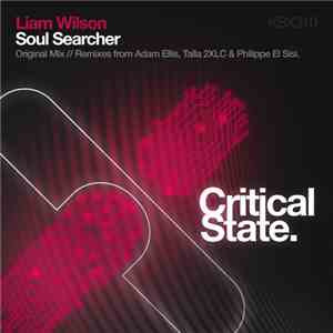 Liam Wilson  - Soul Searcher download mp3