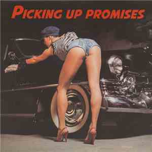 Various - Picking Up Promises download mp3