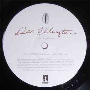 Dee Ellington - Burning Desire download mp3